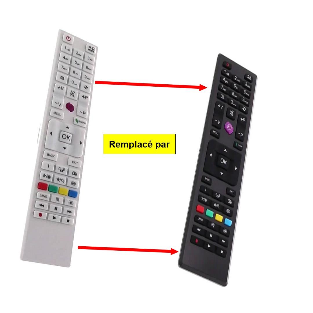 TELECOMMANDE TV RC4876 BLANCHE